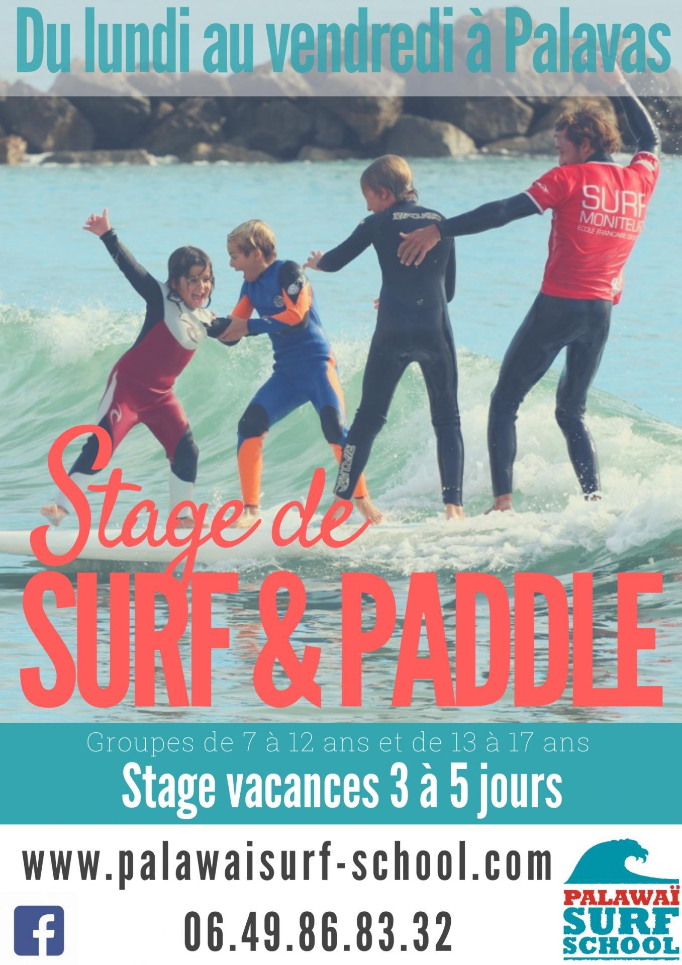 Surf paddle 3